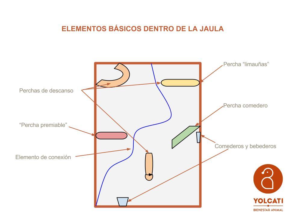 La jaula ideal (1)
